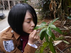 "MihiroMikasa10 • <a style=""font-size:0.8em;"" href=""http://www.flickr.com/photos/66379360@N02/13122524103/"" target=""_blank"">View on Flickr</a>"