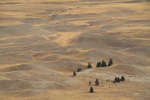 Landschaft in der Nähe von Tekapo