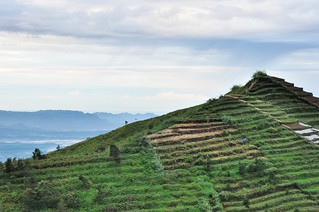 dieng plateau - java - indonesie 16