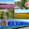 Photo:【埼玉県 花 聖地】 ディー・ノイシ_Walkerplus By