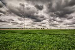 Eoliennes (Gistel - Westhoek) sous un ciel chargé