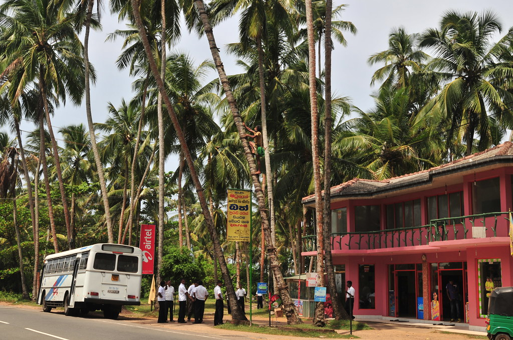 Day in Kalutara & Colombo