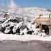Neve no Parque Natural do Alvão-11