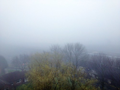 Today is all about...feeling like I'm starring in The Mist