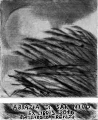 RENZI_ERMENEGILDA_Opera1_canne al vento