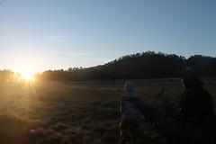 "Pendakian Sakuntala Gunung Argopuro Juni 2014 • <a style=""font-size:0.8em;"" href=""http://www.flickr.com/photos/24767572@N00/26887197370/"" target=""_blank"">View on Flickr</a>"