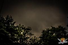 Gloomy Days (1 of 9)