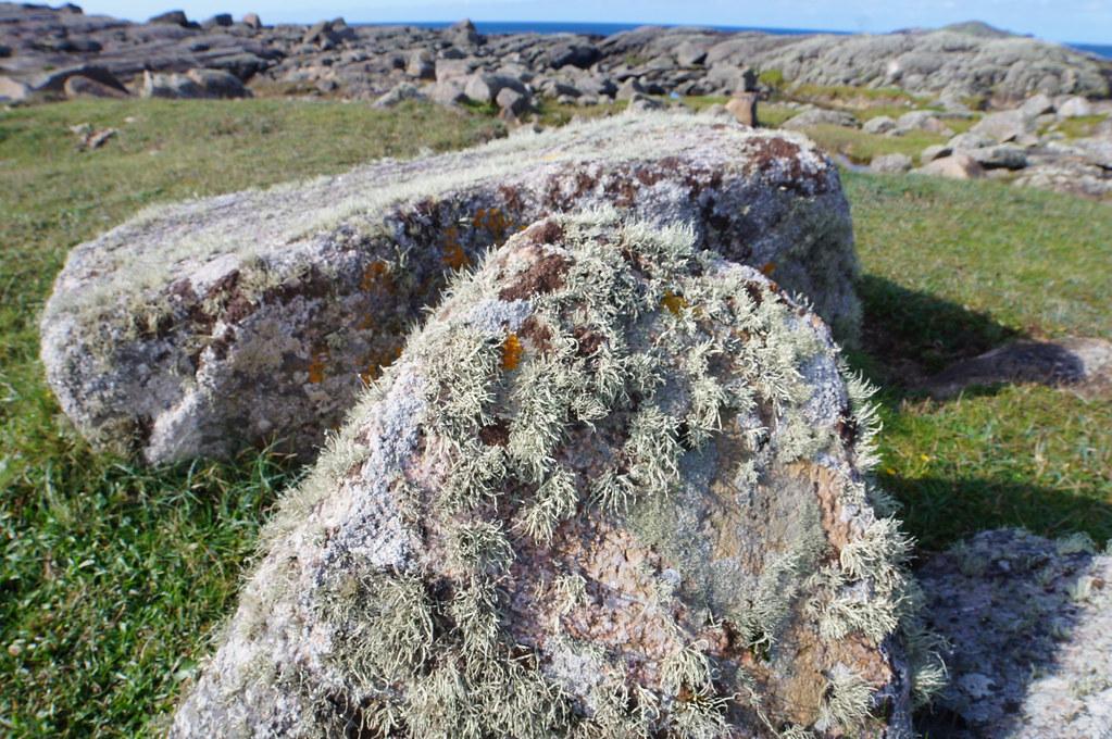 Wild Atlantic Way: Omey Island