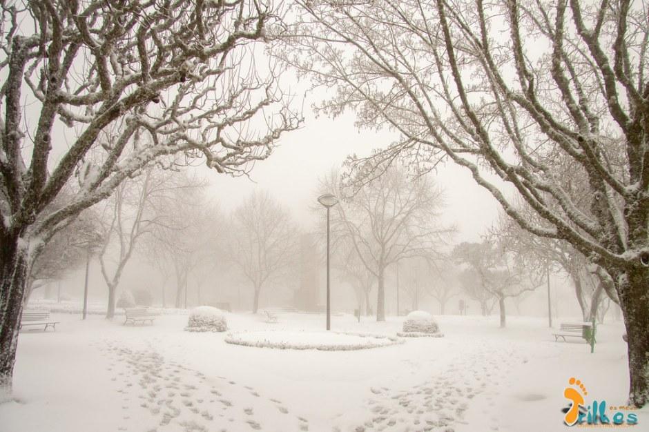 Neve na Cidade da Guarda - janeiro - 2015-40