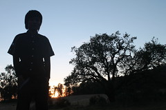 "Pendakian Sakuntala Gunung Argopuro Juni 2014 • <a style=""font-size:0.8em;"" href=""http://www.flickr.com/photos/24767572@N00/27093067291/"" target=""_blank"">View on Flickr</a>"