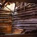 Trä struktur