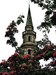 "Irvine Old Parish Church Steeple - Seen Through Blossom (2003) • <a style=""font-size:0.8em;"" href=""http://www.flickr.com/photos/36664261@N05/16343728891/"" target=""_blank"">View on Flickr</a>"