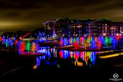Dallas Event Photographer-9826