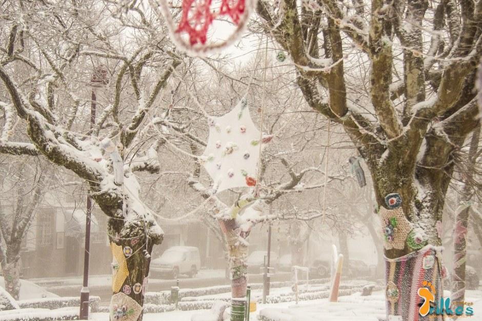 Neve na Cidade da Guarda - janeiro - 2015-31