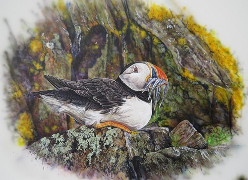 puffinpainting