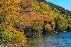 "Jordan Pond Trees • <a style=""font-size:0.8em;"" href=""http://www.flickr.com/photos/19514857@N00/15778708182/"" target=""_blank"">View on Flickr</a>"