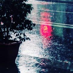 #pluja #rain #piimolist #9barris #noubarris