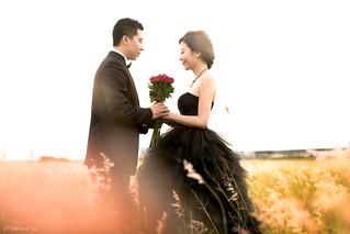 Pre-Wedding [ 中部婚紗 - 海邊草原系列婚紗 ] 婚紗影像 20140911 - 4350-1