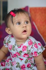 Shanay-annoprashon-2477