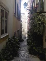 Ruelle Lisbonne