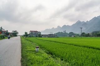 bac son - vietnam 67