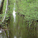 Water way