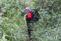 "Pendakian Sakuntala Gunung Argopuro Juni 2014 • <a style=""font-size:0.8em;"" href=""http://www.flickr.com/photos/24767572@N00/27128807766/"" target=""_blank"">View on Flickr</a>"