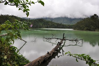 dieng plateau - java - indonesie 8