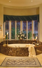 Salina - Master bath tub