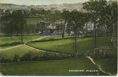 Rodborough Fields