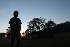"Pendakian Sakuntala Gunung Argopuro Juni 2014 • <a style=""font-size:0.8em;"" href=""http://www.flickr.com/photos/24767572@N00/26887209130/"" target=""_blank"">View on Flickr</a>"