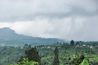 bali nord - indonesie 68