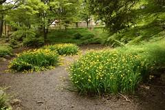 下茶屋公園