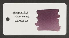 Rohrer & Klingner Scabiosa - Word Card