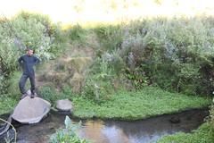 "Pendakian Sakuntala Gunung Argopuro Juni 2014 • <a style=""font-size:0.8em;"" href=""http://www.flickr.com/photos/24767572@N00/26555407054/"" target=""_blank"">View on Flickr</a>"