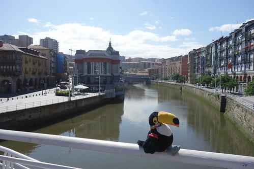 Ce matin Pelico a suivi le fleuve qui traverse Bilbao