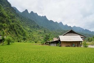 ha giang - vietnam 20