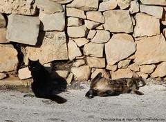 En el estacionamiento de Ħaġar Qim