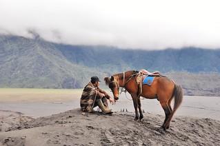mont bromo - java - indonesie 31