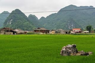 bac son - vietnam 45