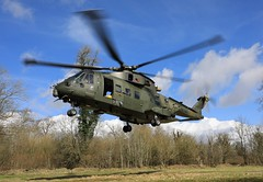 Royal Navy Merlin conducting a Confined Area landing on Salisbury Plain