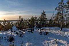 Korkkoonen-12.1.2019