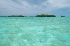 Surface interval. Palau