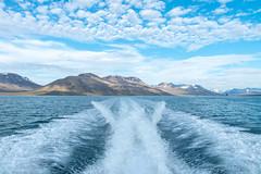 Sailing through the glaciers