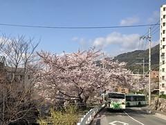 190411_Spring_2