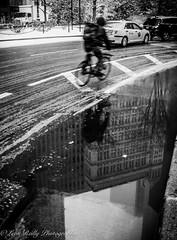 Downtown Cyclist, NYC