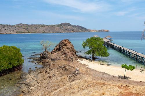 Les Iles Komodo