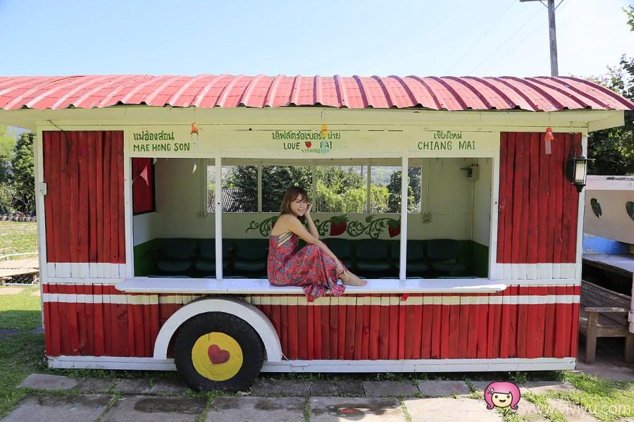 [拜縣景點]清邁近郊.PAI草莓園│滿滿草莓相關產品.彩色傘海~草莓控絕對不能錯過的甜蜜景點 @VIVIYU小世界