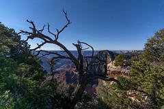 North Rim - Grand Canyon National Park