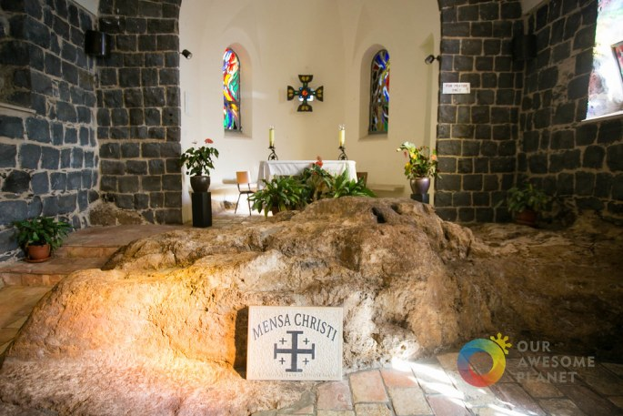 Day 3- Church of the Primacy of Peter - Our Awesome Planet-48.jpg
